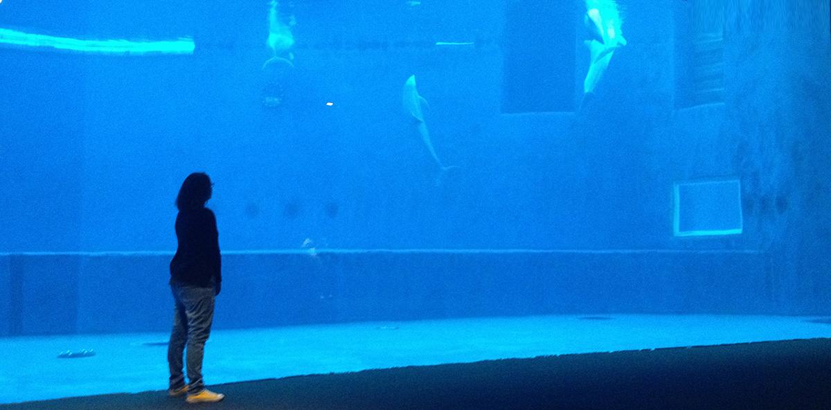 acquario che risale acquariouna direzione incontri immagina